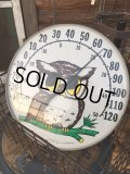 70s Vintage Owl Thermometer (MA472)